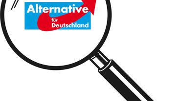 (K)eine Alternative für Deutschland